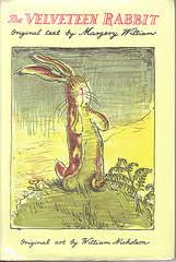 the rabbit book the velveteen rabbit by margery williams bianco