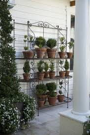 Elephant Topiary Top 25 Best Topiaries Ideas On Pinterest Topiary Plants Urn