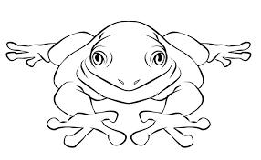 frog coloring pages printable gekimoe u2022 106922
