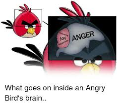 Angry Birds Memes - parenting anger happiness what goes on inside an angry bird s brain