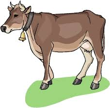 image of cows free download clip art free clip art on