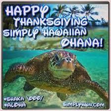 happy hump day simply hawaiian ohana safe travels and much