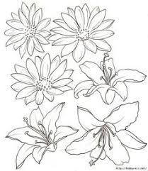 Flower Designs For Drawing Orchid Sketches Orchid By Irongarlic Traditional Art Drawings