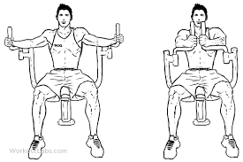 butterfly pec deck seated machine fly illustrated exercise