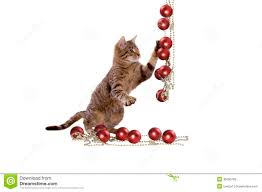 cat plays with christmas decorations royalty free stock images