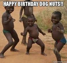 Dancing Dog Meme - happy birthday dog nuts dancing black kids make a meme
