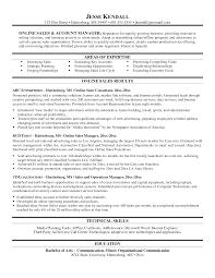 Sample Resume For Senior Management Position by Resume Templates