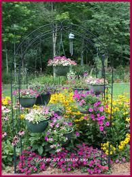 gardening our backyard in summer swede