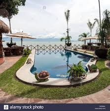 lakeside patio garden with infinity pool decorated with small