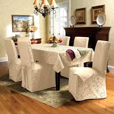 startling seat dining room chairs chair protective ideas brilliant