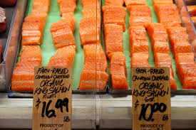 what you need to know about farm raised vs wild caught fish wtop