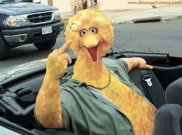king of new york hacks big bird not the thanksgiving