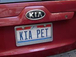 Florida Vanity Plate Cost 118 Best Personalized License Plate Ideas Images On Pinterest