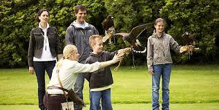 Loch Lomond Cottage Rental by Falconry Bird Of Prey Centre Loch Lomond Scotland U2013 Holiday