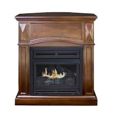 interior design electric fireplace insert facts electric ventless