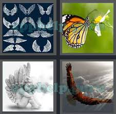 4 pics 1 word all level 2301 to 2400 5 letters answers game