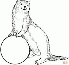 sea otter coloring pages alef bet coloring pages images about