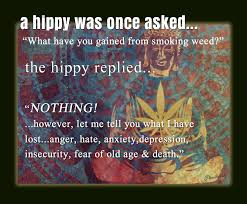Hippy Memes - weed memes hippy was once asked weed journal marijuana