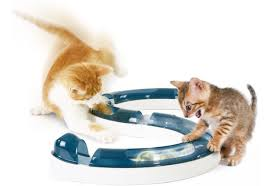 5 high tech toys for your geeky cat