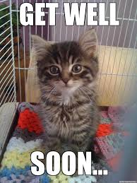 Sad Kitten Meme - get well soon kitty weknowmemes generator