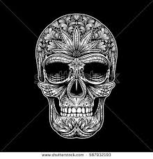 skull background stock images royalty free images vectors