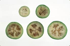 Judge A Tree By Its Fruit - feijoa you can eat that food blog anr blogs