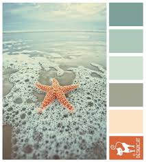 starfish 2 teal blue dusky steel slate grey blush