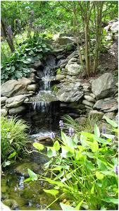 backyards wonderful backyard stream ideas backyard sets modern