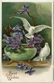 purple flowers and doves free vintage postcard image