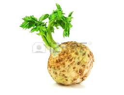 Celery Root Vegetable - root vegetables stock photos royalty free root vegetables images