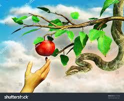 Snake Fruit Tree - evas hand reaching forbidden apple snake stock illustration