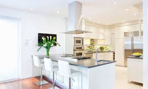 Types Of Kitchen Cabinet White Kitchen Cabinets With Grey Countertops Style For Ideal