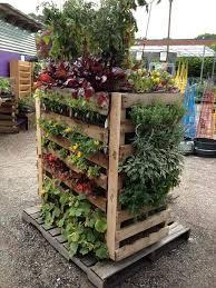 pallet vegetable garden gardensdecor com