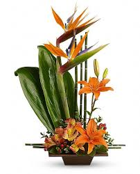 flower delivery san antonio grace by apple blossom florist oakland florist flowers