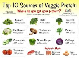 getting enough protein while eating raw foods