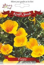 Flower Seeds Online - winter flower seeds flower seeds flower seeds online begonia