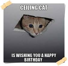 Southern Memes - southern birthday meme birthday best of the funny meme