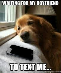 Dog Text Meme - waiting for my boyfriend to text me dog waiting for text