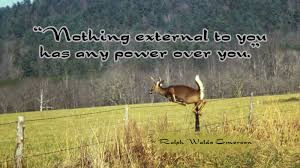 leadership quotes ralph waldo emerson 102 deer jumping fence wallpaper quotes