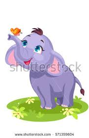baby elephant butterfly outline drawing stock vector