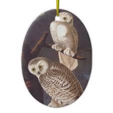 snowy owl ornaments keepsake ornaments zazzle