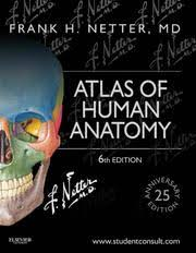 Human Anatomy Textbook Pdf Atlas Of Human Anatomy Frank H Netter 6th Edition Free