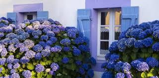 Les Chambres D Hôtes Office De Tourisme Et Chambres D Hotes Office De Tourisme De île En Mer