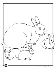baby bunny coloring pages woo jr kids activities