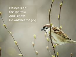 his eye is on the sparrow ppt
