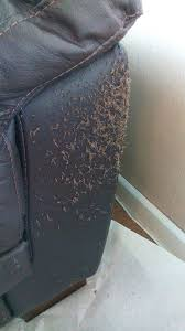 how to fix cut in leather sofa repair leather sofa singapore tear small in furniture scratched