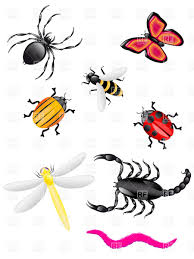 bugs and insects clipart kid 3 clipartix