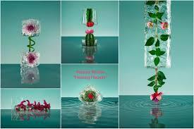 Kuhns Flowers - 100 kuhns flowers kenji toma u0027the most beautiful