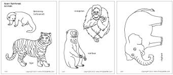 jungle u0026 rainforest animals printable templates u0026 coloring pages