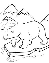 free polar bear coloring